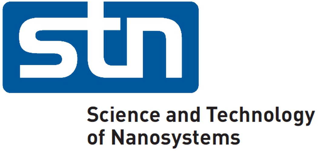 Logo of the Science and Technology of Nanosystems Research Program (STN).